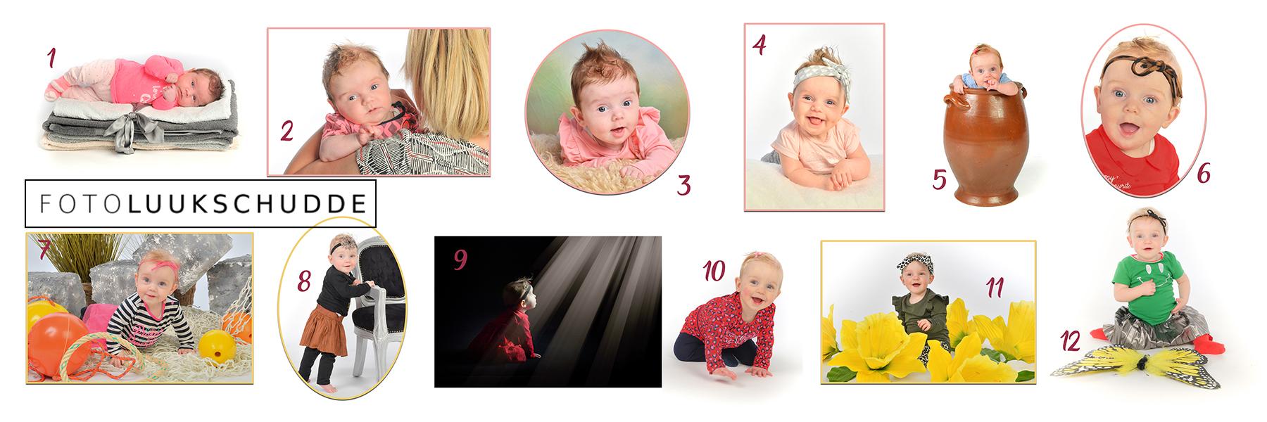 brands-babycyclus